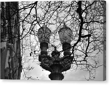 Canvas Print featuring the photograph Tree Framed Lampost Black And White by Matt Harang