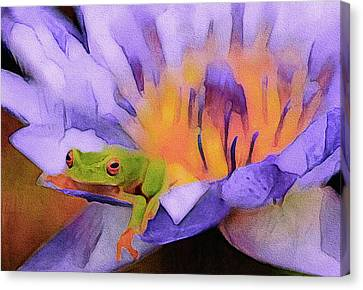 Tree Frog In Repose Canvas Print
