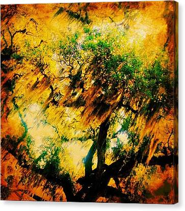 Edit Canvas Print - #tree #green #yellow #colourful #sc by Katie Williams