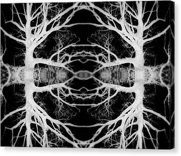 Tree Kaleidescope  Canvas Print