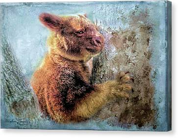 Canvas Print featuring the photograph Tree Kangaroo by Wallaroo Images