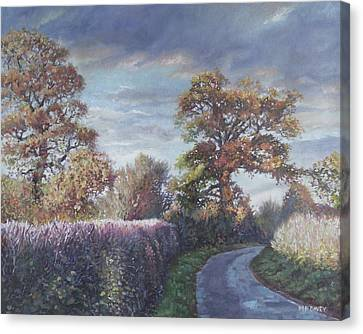 Canvas Print - Tree Lined Countryside Road by Martin Davey