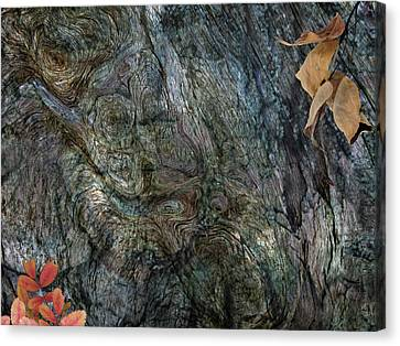 Canvas Print featuring the photograph Tree Memories # 33 by Ed Hall