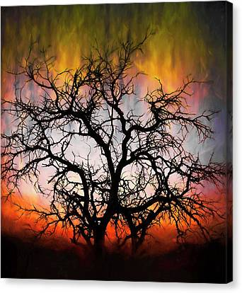 Tree Of Fire Canvas Print