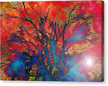 Tree Of Ghosts Canvas Print by Linnea Tober