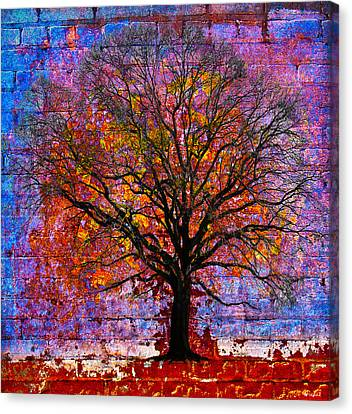 Tree Of Life Canvas Print by David Clanton