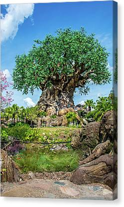 Tree Of Life Canvas Print by Pamela Williams