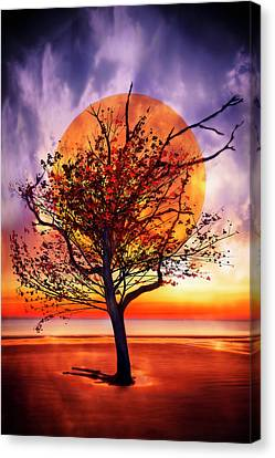 Tree On Fire Canvas Print by Debra and Dave Vanderlaan