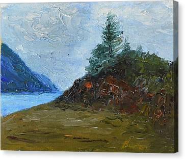 Tree On Turnagain Canvas Print