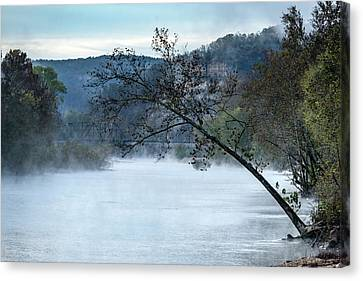 Tree Over Gasconade River Canvas Print by Jae Mishra