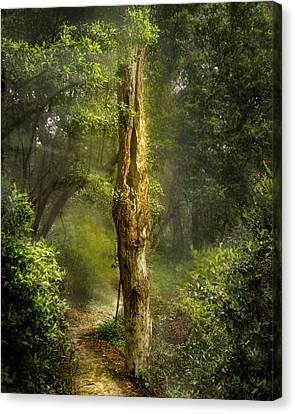 Tree Passing Canvas Print by Larry Jones