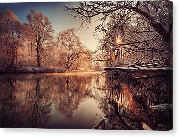 Tree Reflection In River Canvas Print by Philippe Sainte-Laudy Photography