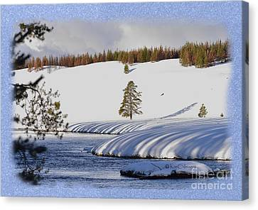 Canvas Print featuring the photograph Tree Shadows Along The Madison by Kae Cheatham