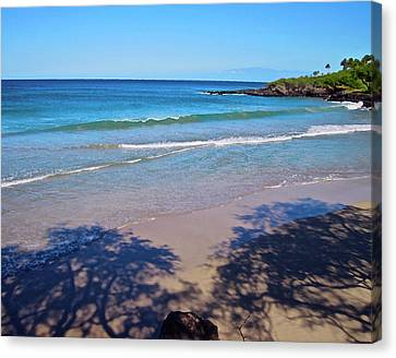 Tree Shadows At Hapuna Beach Canvas Print