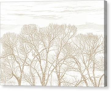 Canvas Print featuring the photograph Trees Silhouette Brown by Jennie Marie Schell