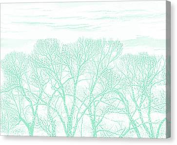Canvas Print featuring the photograph Tree Silhouette Teal by Jennie Marie Schell