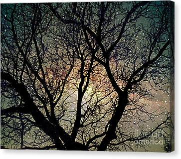 Canvas Print featuring the photograph Tree Silhouette With Stars. by Yulia Kazansky