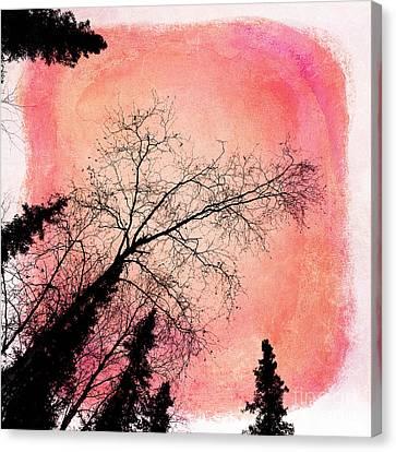 Tree Silhouettes I Canvas Print by Priska Wettstein