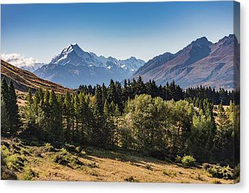Canvas Print featuring the photograph Tree View Of Mt Cook Aoraki by Gary Eason