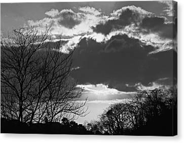 Trees And Clouds-st Lucia Canvas Print