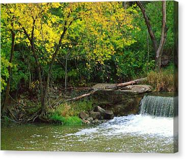 Trees And Dam Canvas Print