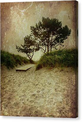 Trees By The Sea Canvas Print