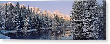 Trees Covered With Snow, Policemans Canvas Print by Panoramic Images