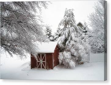 Trees Fresh Snow Fall In The Backyard Canvas Print by Thomas Woolworth