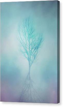 Trees In Winter Canvas Print