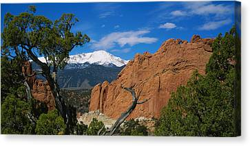 Trees In Front Of A Rock Formation Canvas Print by Panoramic Images