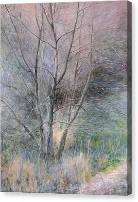 Canvas Print featuring the painting Trees In Light by Harry Robertson