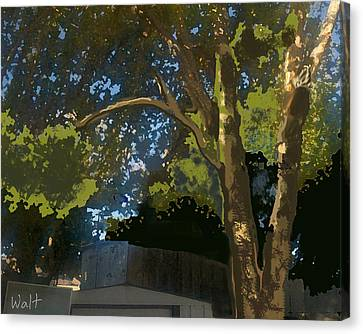 Trees In Park Canvas Print