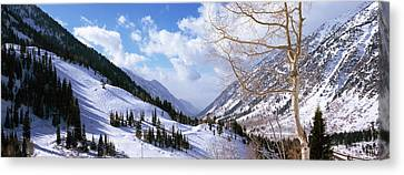 Trees In Snow, Snowbird Ski Resort Canvas Print by Panoramic Images