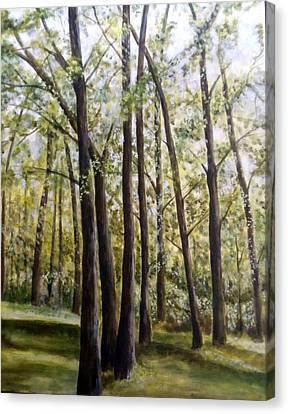 Trees Canvas Print by Lorna Skeie