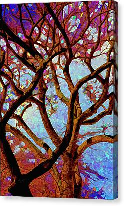 Trees Of Another Color Canvas Print by Robert Ullmann