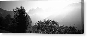 Trees On A Landscape, Dolomites, Alto Canvas Print
