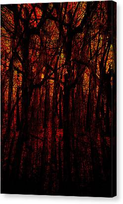 Canvas Print featuring the photograph Trees On Fire by Robert Harshman