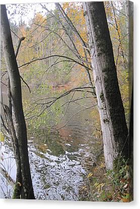 Canvas Print featuring the photograph Trees On Lake Padden by Karen Molenaar Terrell