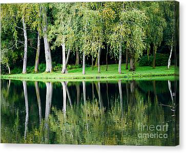 Canvas Print featuring the photograph Trees Reflected In Water by Colin Rayner