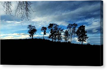 Canvas Print featuring the photograph Trees by RKAB Works