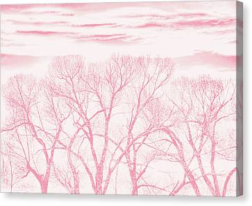Canvas Print featuring the photograph Trees Silhouette Pink by Jennie Marie Schell