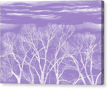 Canvas Print featuring the photograph Trees Silhouette Purple by Jennie Marie Schell