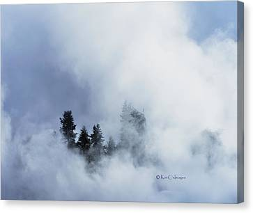 Trees Through Firehole River Mist Canvas Print