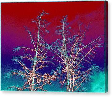 Treetops 4 Canvas Print
