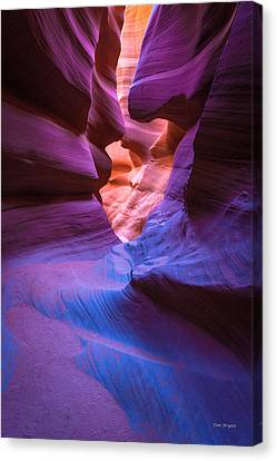 Tri-color- Lower Antelope Canyon Canvas Print