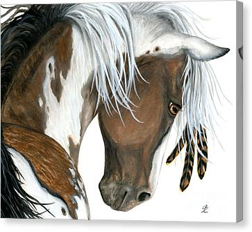 Tri Colored Pinto Horse Canvas Print by AmyLyn Bihrle