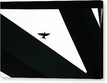 Triangles Canvas Print by Dan Friend