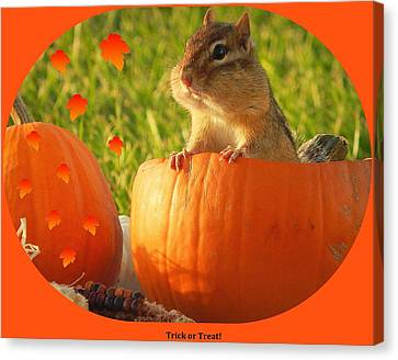 Trick Or Treat Canvas Print by Karen Cook