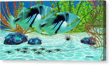 Triggerfish Canvas Print by Corey Ford