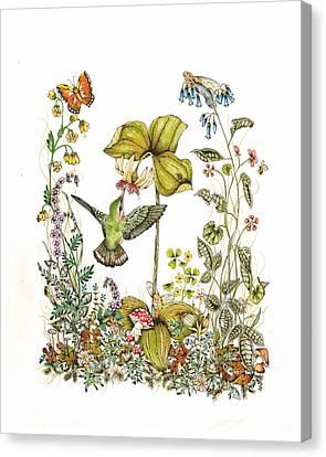 Trillium Canvas Print by Donna Genovese